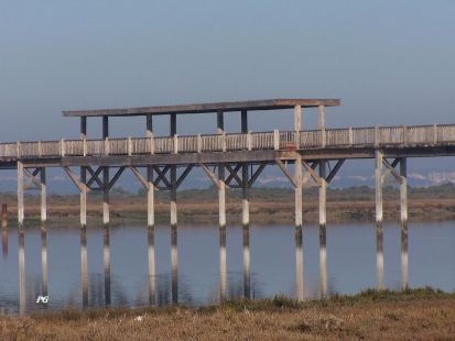 puente del rio san pedro