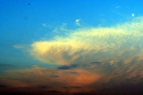 Andaba en las nubes. en otro mundo,lejos de la realidad.