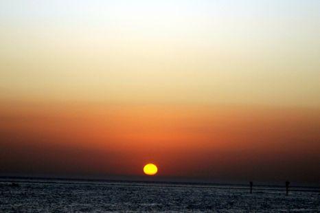 Tu adiós fue un testamento deshojado. Mañana volverá el sol.