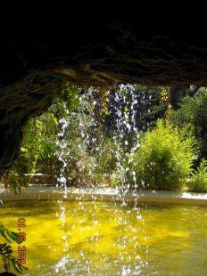 Parque Genovés. Lugar que a finales del siglo XVIII era conocido por los gaditanos como paseo del ?perejil?.