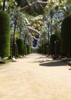 Parque Genoves Cádiz