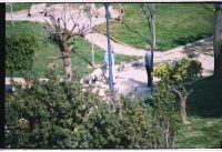 Perros Sueltos Parque Varela