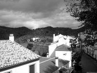Torrealhaquime