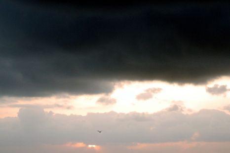 lluvias torrenciales.
