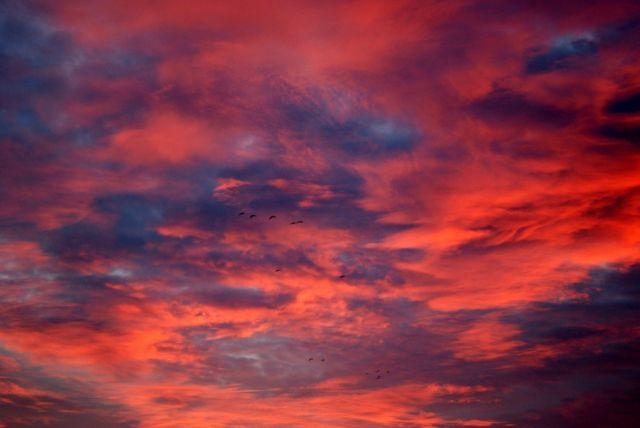Nubes y nubes, fantasmal galope de las  nubes sobre las crestas de mi memoria.