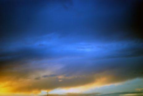 Su color se intensifica al sol, pero no se queman nunca