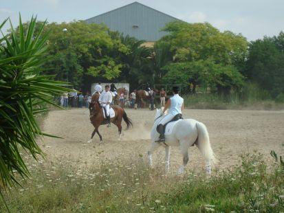 CONCURSO DE EXHIBICION DE LA DOMA EN EL CENTRO HIPICO DE LOS LAGOS