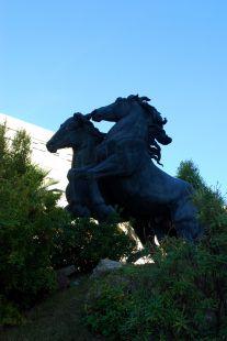 Plaza el caballo.