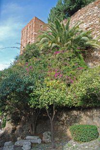 Guía fotográfica de la Alcazaba de Málaga-2010