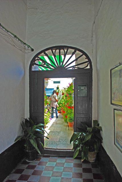 Patios de El Puerto-Ganado 88