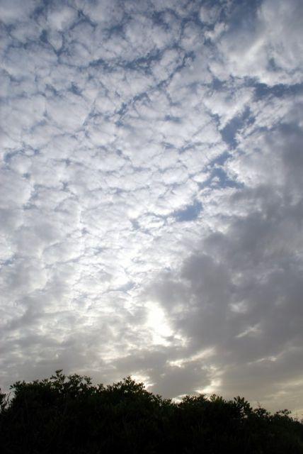 Nubes de verano.