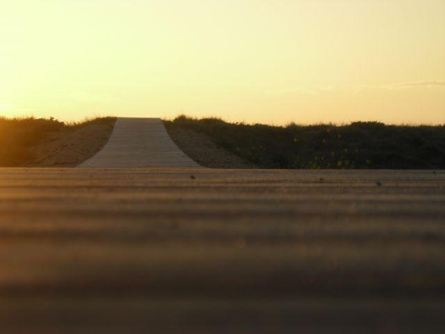 Camino hacia la playa llenos de ternura caminamos juntos con tesura voy a tu encuentro alegre y contento tu sonriéndome alegras mi vista nos juntamos en la pista tu cuerpo es esbelto como crear un soneto nos besamos y caminamos bajamos el cielo con una ma