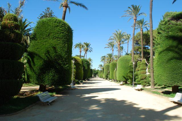 El parque Genovés, Cádiz.