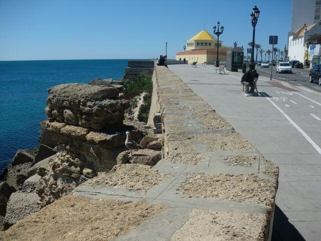 Campo del sur, Cádiz.