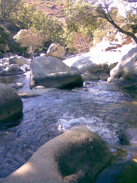 En el río.