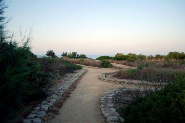 Un camino sin barrerar, porque así es la vida, llega de barreras o obstáculos.