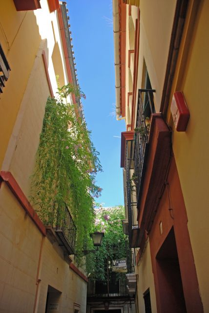 Juderia de Sevilla